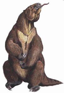 640px-Megatherum_DB