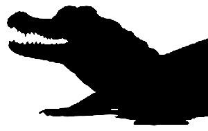 crocodile-head-silhouette-22568402-vector-graphic ...