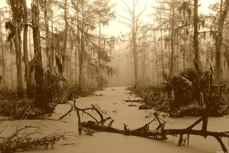swamp_tina_landscapes_vintage_hd-wallpaper-221681