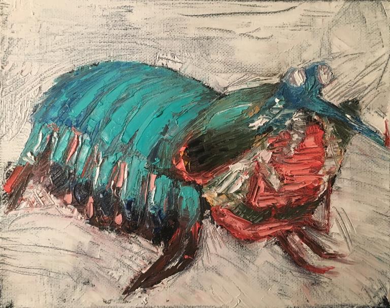 MantisShrimpMeyer